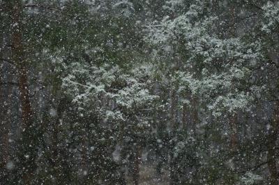 Powrót zimy - 2 kwietnia 2015